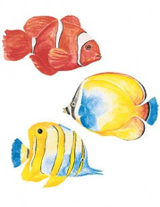 Create your dream sea theme with these tropical fish wall stickers